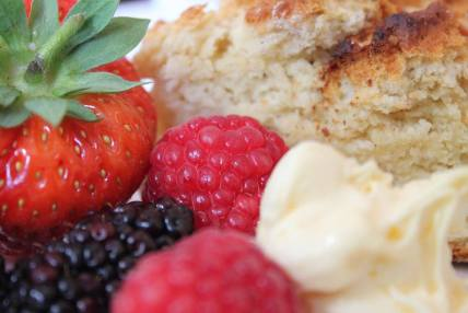 Fruit and scone closeup