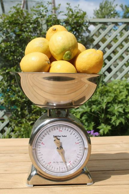 Scales and lemons