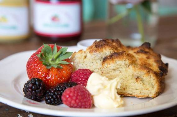 Fruit and scone
